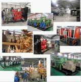 100kw CNG 액화천연가스 Biogass 천연 가스 엔진 힘 전기 발전기 또는 Genset
