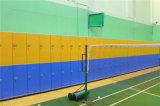 Apparatuur de van uitstekende kwaliteit van de Gymnastiek van de Kast van de Zaal Chaning