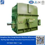 AC Synchronous Motor, Hengli AC Synchronous Motor