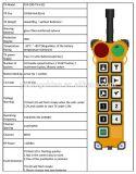 Resistente al agua 10 botones de radio Industrial de 2 velocidades Control Remoto para Pilar grúas pescante F24-10d