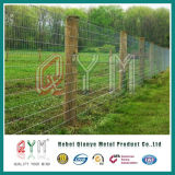 Ограждать поля суставного сочленения загородки фермы загородки оленей свиньи лошади овец скотин