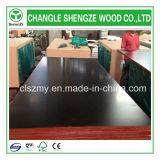 16mm Whterproof Black Film Shuttering Plywood
