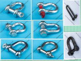 Type commercial Shackle Screw Pin Anchor Shackle