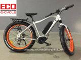リチウム電池の脂肪質のタイヤの電気自転車が付いているマウンテンバイク
