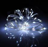 2016 het Nieuwe LEIDENE Licht van het Koord in Fles voor de Decoratie van Kerstmis