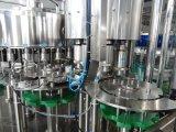 Enchimento automático da água bebendo do frasco do animal de estimação
