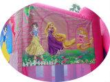 Горячие продажи дешевой принцесса надувные подпрыгивания прыжком замки на аренду