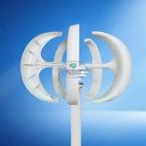 바람 발전기 주거 발전기를 가동하는 완벽한 100W 24V 수직 축선 바람 발전기 낮은 풍속