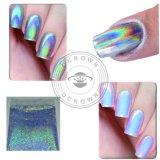 Spiegel-Puder-Laser-silberner Pigment-Regenbogen glänzendes Holo Spiegel-Nagel-Funkeln