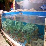 Acuario de acrílico transparente modificado para requisitos particulares, el tanque de pescados de gran tamaño