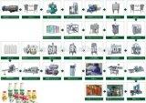 Volledige Automatische ZuivelLopende band voor de Behoeften van de Industrie met Ce/ISO