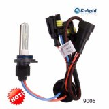 Bulbo ESCONDIDO 6500K 12V 35W do xénon da luz D4s D2r D2c D2h do carro do farol de Cnlight D1s D2s D3s 4800K 5500K