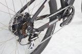 Bike самой лучшей горы качества электрический (FR-TDB04Z)