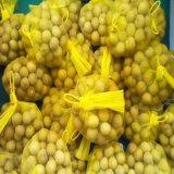 Sac net d'emballage végétal/sac de maille pour l'oignon