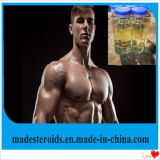 Nandrolone legal Undecylate del aumento del polvo del músculo de los esteroides anabólicos de la pureza elevada del CAS 862-89-5