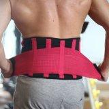 El vientre que adelgaza ajustable de la correa del amaestrador de la cintura del Muti-Color de la correa del soporte de la cintura del neopreno rodea la protección de la cintura de los deportes de Bodyshapers