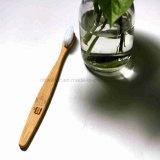 Toothbrush di bambù del nero della maniglia della famiglia