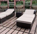 Stellte Garten-Rattan-Patio-im Freien Haupthotel-Büro-Wales-Aufenthaltsraum-im Freiensofa ein (J652)