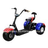 Della fabbrica triciclo elettrico adulto utilizzato famiglia direttamente 60V 1500W grande per acquisto
