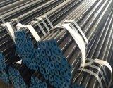 Estremità smussata di qualità di marca principale di Youfa prezzo senza giunte del tubo d'acciaio da 16 pollici