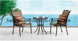 /Rattan ao ar livre/cadeira & tabela de pano de Texilene mobília do jardim/pátio/hotel ajustou-se (&HS 6060ET do HS 2039C)