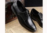 De perfecte Mensen van de Manier van het Vakmanschap kleden Schoenen