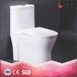Assoalho sanitário dos mercadorias - montado um toalete cerâmico do Wc da parte