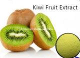 Natürliches Puder des Kiwi-Frucht-Auszug-98% Thaumatin, 4:1 ~10: 1