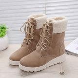 Осень и зима новые British плюс сгущать ботинки Мартин греют и хлопок отдыха женский Boots оптом