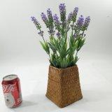 Decoratie van de Tuin van de Lavendel van de Bonsai van het stro de Kunstmatige