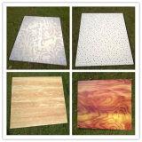 600*60mm bleifreies Strahlungs-Abschirmungs-Panel für Decke