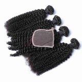 Cheveux humains brésilien de la trame Jerry Curl Tissage de cheveux humains Remy Hair