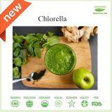 100%の自然な栄養物の補足の有機性クロレラの粉