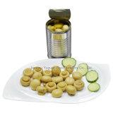 Отсутствие пестицида хорошего продающ гриб зеленой еды верхнего качества законсервированный