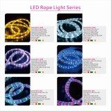 Lichter SMD5050, die bunten flexiblen LED-Streifen für Traumbeleuchtung ändern
