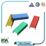 Bureau de couleur de base pour de fournitures de bureau