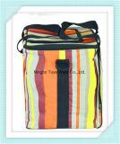Farbenreicher Form-Kühlvorrichtung-Beutel
