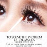 Hochwertige niedrige MOQ Wimper-Augenbraue erhöhenserum