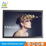 Full HD 1080p carré de 20,1 pouces Moniteur LCD avec 12V DC (MW-203MO)