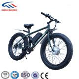 脂肪質のEバイク48Vモーター
