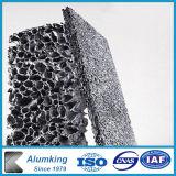Mousse en aluminium pour les bâtiments Art Déco murale