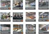 セリウムSGS ISOは10トンモーターを備えられたチェーン起重機を証明する