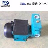 高品質及び安い価格の小さい電気水ポンプ0.5HP