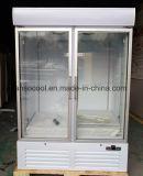 Congelatore di frigorifero dritto commerciale della visualizzazione dell'alimento Frozen del supermercato con il portello di vetro