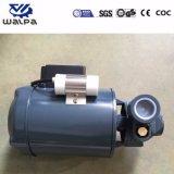 Bomba de água Electric 220V 50Hz com impulsor de Latão