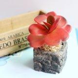 Низкая цена имитация растения искусственные цветы Succulents