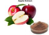 80 % Extrait de poudre d'antioxydant Polyphneols Apple