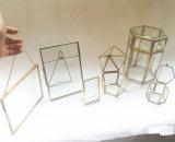 رفاهية زجاج ونحاس أصفر صندوق مربع [جولربوإكس] صغيرة زجاجيّة