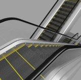 Escalator pour le centre commercial et le centre commercial
