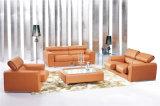 وقت فراغ إيطاليا جلد أريكة أثاث لازم (574)